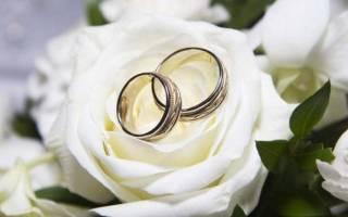 Выкуп невесты — перечень вопросов и конкурсов. Оригинальные конкурсы для выкупа невесты. Смешные и необычные варианты